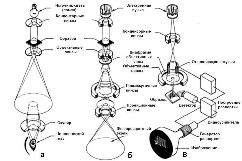 mikroskopy-svetovoy-prosvechivayushchiy-skaniruyushchiy